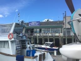 Fishing Club in Gizzy