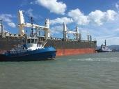 Tugs pushing ship in Gizzy