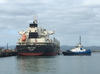 Tugs ready to help ship leave Gisborne