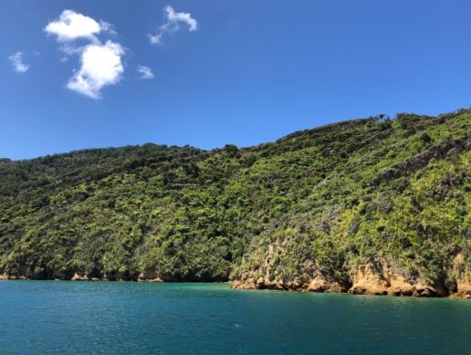 Ashley Bay