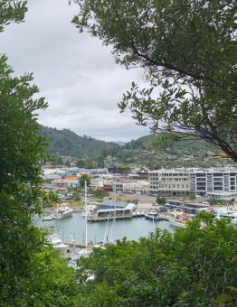 Picton to Waikawa 1