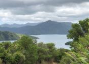 Picton to Waikawa 4