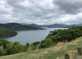 Picton to Waikawa 8
