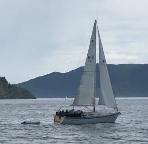 Shamrock under sail