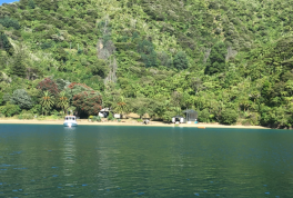 Torea Bay 1