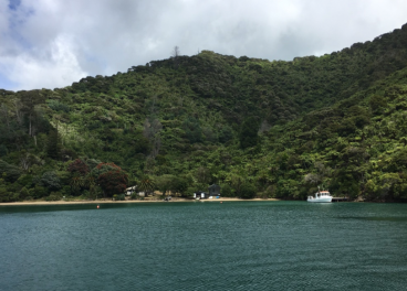 Torea Bay