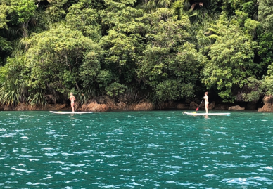 Girls Paddle Boarding in Wiona