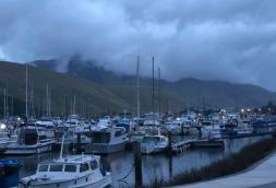Havelock Marina 2