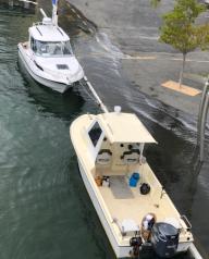King Tide in Picton 2