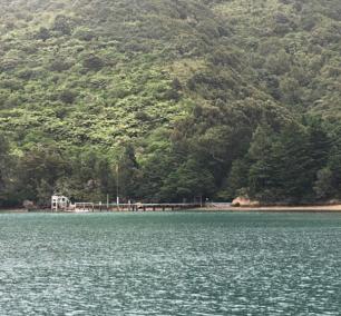 Ti Ora Lodge 1