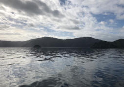 Travelling to Pelorus 4