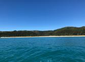 023 Torrent Bay