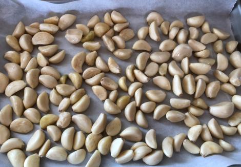 063 Garlic